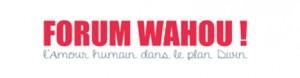 liens-forum-waouh